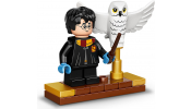 LEGO Harry Potter 75979 Hedwig™